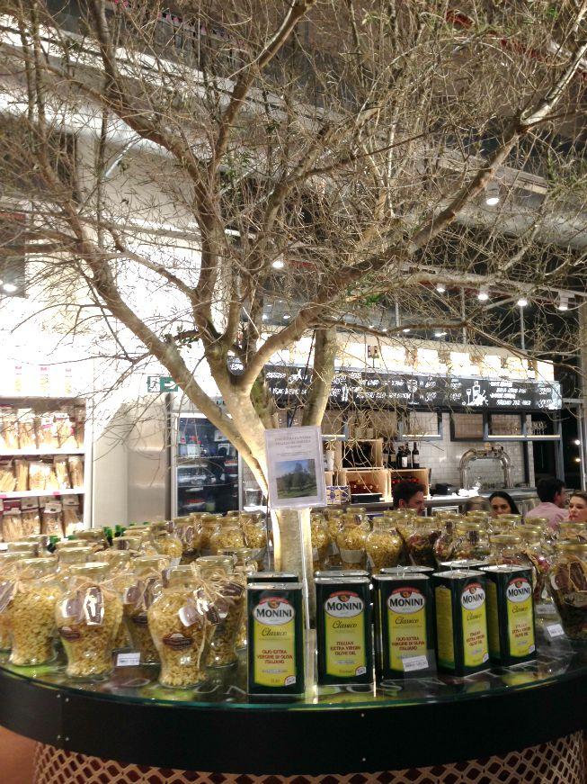 Uma oliveira dentro do Eataly