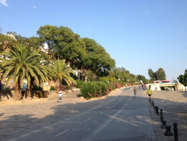 Paseo Alcalde Marqués del Contadero